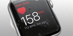 Kaip patikrinti pulsą naudojant Apple Watch